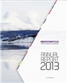 NORDEFCO Annual Report 2013